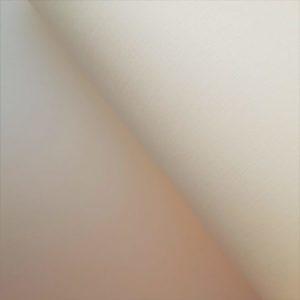 Фактурная бумага цвет айвори.