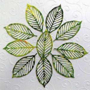 Набор зеленых листьев для творчества.